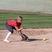 Lexie Delcollo Softball Recruiting Profile