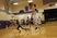 Derek Mount Men's Basketball Recruiting Profile
