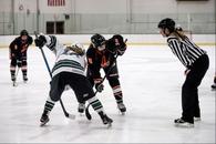 Abigail Flanagan's Women's Ice Hockey Recruiting Profile