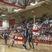 Drew Hogan Men's Basketball Recruiting Profile