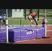 Shea Anderson Women's Track Recruiting Profile