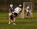 Oliver Modderman Men's Lacrosse Recruiting Profile