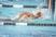 Chris Birnbaum Men's Swimming Recruiting Profile