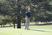 Jerome Landry, Jr. Men's Golf Recruiting Profile