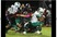 Ty Jenkins Football Recruiting Profile