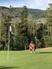 Jacob Webb Men's Golf Recruiting Profile