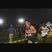Daniel White Men's Track Recruiting Profile