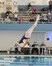 Abby Camarda Women's Diving Recruiting Profile