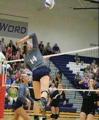 Elly Medendorp's Women's Volleyball Recruiting Profile