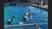 Jacob Alberts Men's Water Polo Recruiting Profile