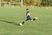 Cannon Barney Men's Soccer Recruiting Profile