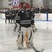 Nevin Tardif Men's Ice Hockey Recruiting Profile
