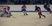Kennedy Eddy Men's Ice Hockey Recruiting Profile