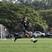 Hannah Dela Vega Women's Soccer Recruiting Profile
