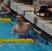 Grant Beebe Men's Swimming Recruiting Profile