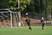 Tyler Pulliam Men's Soccer Recruiting Profile
