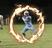Alejandro Harrell Football Recruiting Profile