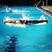 Erin Trahan Women's Swimming Recruiting Profile