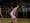 Athlete 421175 small