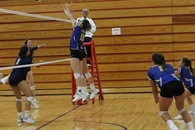 Avery Schneider's Women's Volleyball Recruiting Profile
