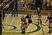 Peyton Janeway Women's Volleyball Recruiting Profile