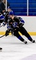 Hunter Fetterolf Men's Ice Hockey Recruiting Profile