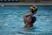 Miah Salinas Women's Water Polo Recruiting Profile
