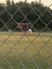 Matt Wohlers Baseball Recruiting Profile
