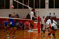 Taylor Ganer's Women's Volleyball Recruiting Profile