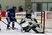 Andrew Ness Men's Ice Hockey Recruiting Profile