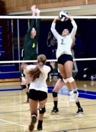 Nell Shorin's Women's Volleyball Recruiting Profile