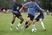 Addison Gee Men's Soccer Recruiting Profile