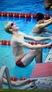 Kaleb Donels Men's Swimming Recruiting Profile
