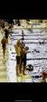 Daniel Schwabauer Men's Swimming Recruiting Profile
