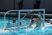 Max Edwards Men's Water Polo Recruiting Profile