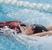 McKenna Delp Women's Swimming Recruiting Profile