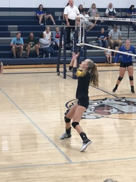 Kaelynn Driskell's Women's Volleyball Recruiting Profile