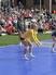 Hallie Rittel Women's Volleyball Recruiting Profile