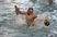 Stevan Rasic Men's Water Polo Recruiting Profile