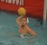 Matt Sherry Men's Water Polo Recruiting Profile