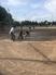 Erica Bacon Softball Recruiting Profile