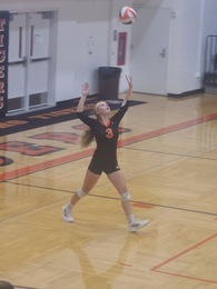 Alexis Wallace's Women's Volleyball Recruiting Profile