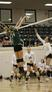 Sara Landis Women's Volleyball Recruiting Profile