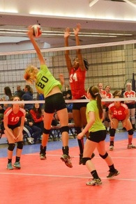 Adria Powell's Women's Volleyball Recruiting Profile
