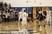 Hunter Haun Men's Basketball Recruiting Profile