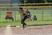 Erin Field Softball Recruiting Profile