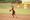Athlete 649042 small