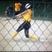 Bailey Wilkinson Softball Recruiting Profile