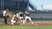 Drew Dodd Baseball Recruiting Profile