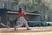 Trent Prokes Baseball Recruiting Profile